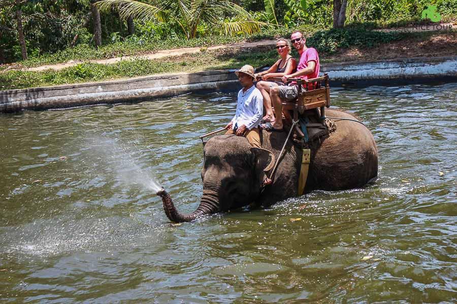 Bali Day Tour | Elephant Ride Bali & Ubud Tour