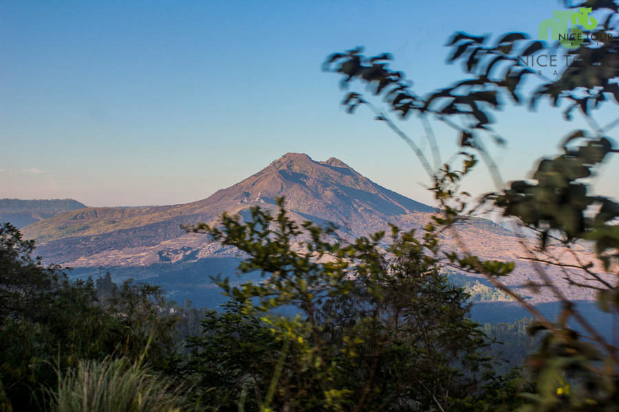 Bali Day Tour | Kintamani Volcano & Ubud Tour