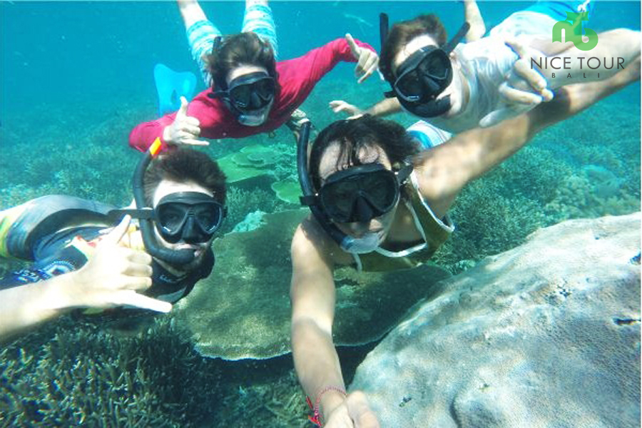 One Day Snorkeling Trip at Nusa Penida & Nusa Lembongan Islands
