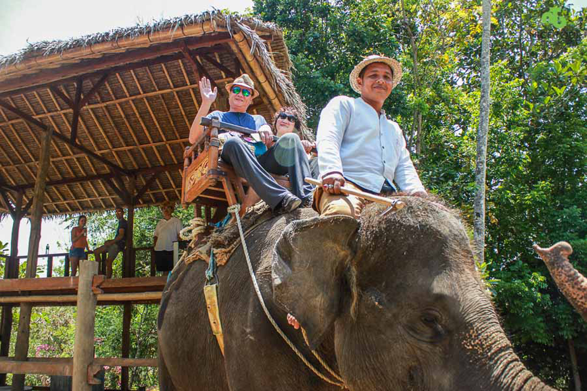 Elephant Ride Activities