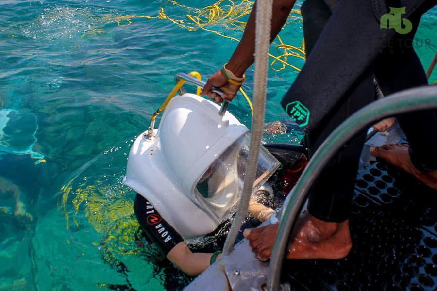 Seawalker Activities