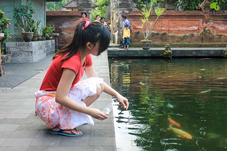 Tirta Empul Temple Pond Compound