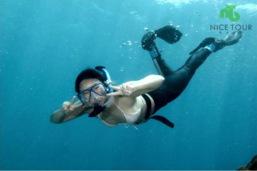 Wallbay Snorkeling Point