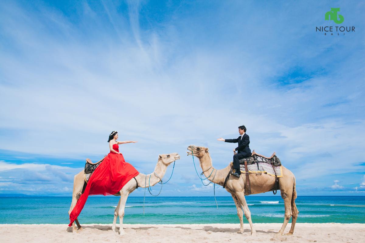 Camel Ride at Nusa Dua