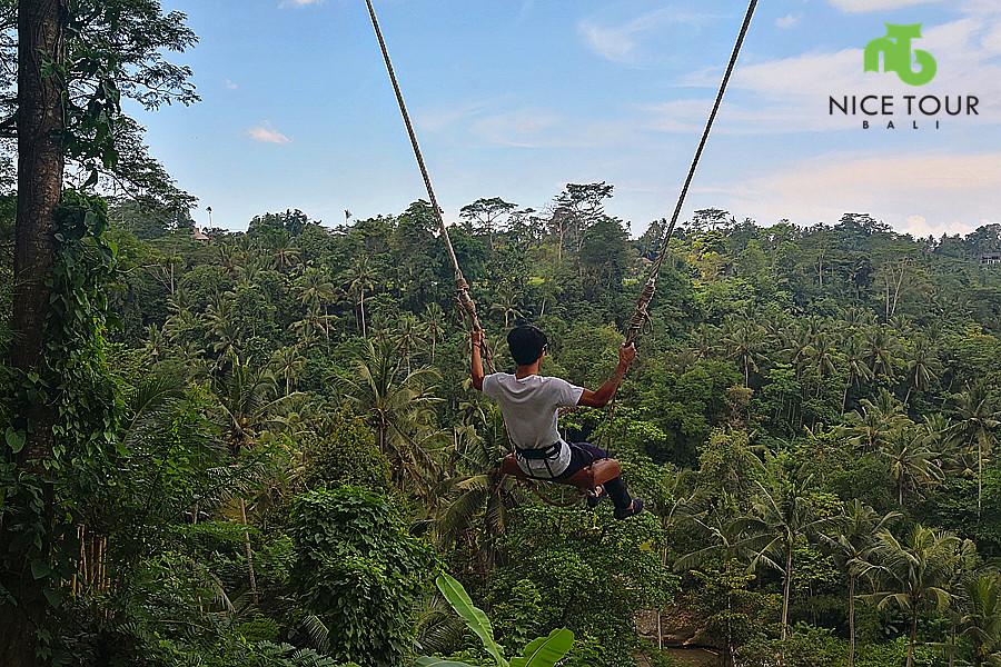 Bali Swing Ubud Tour Package + Bali Waterfall Tour
