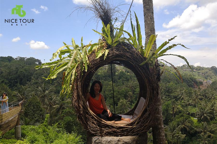 nest at my swing bali