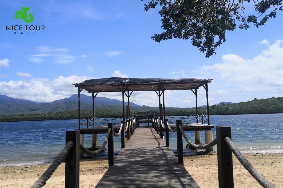 Menjangan Tour Bali 4 days Tour Package | West Bali National Park.